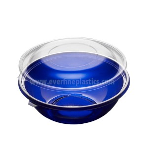 Plastic Bowl and Lid